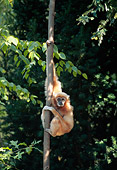 PRM 10 CE0001 01