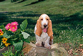 PUP 01 CE0030 01