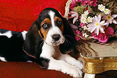 PUP 01 RK0024 04