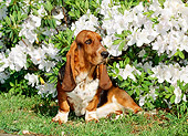 PUP 01 CE0014 01