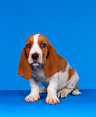PUP 01 RK0003 07