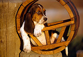 PUP 01 RK0032 08