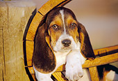 PUP 01 RK0032 09