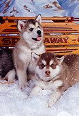 PUP 02 RK0140 03