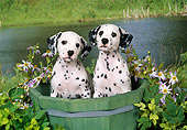 PUP 03 FA0047 01