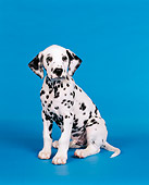 PUP 03 RK0053 03