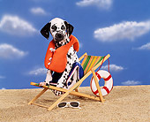PUP 03 RK0109 07