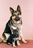 PUP 04 FA0027 01