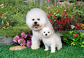 PUP 04 FA0030 01