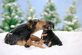 PUP 04 PE0014 01