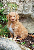 PUP 05 NR0025 01