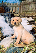 PUP 05 CE0015 01