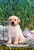 PUP 05 CE0018 01