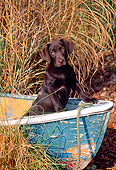 PUP 05 CE0035 01