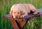 PUP 05 GR0090 01