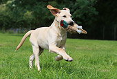 PUP 05 NR0023 01