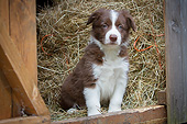 PUP 06 NR0007 01