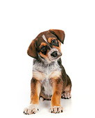 PUP 07 RS0026 01