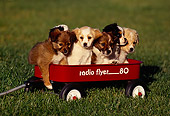 PUP 07 RK0026 01