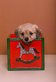 PUP 07 RK0093 14