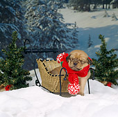 PUP 07 RS0092 03