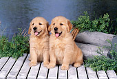PUP 08 FA0028 01