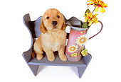 PUP 08 RK0326 10