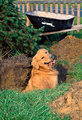PUP 08 CE0044 01