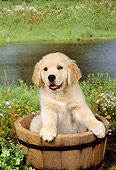 PUP 08 FA0003 01