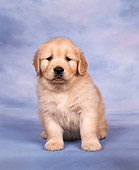 PUP 08 RK0009 04