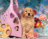 PUP 08 RK0055 01