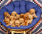 PUP 08 RK0171 14