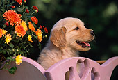 PUP 08 RK0265 21