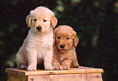 PUP 08 RK0271 10