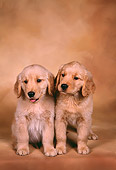 PUP 08 RK0301 06