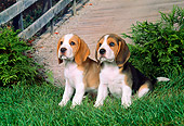 PUP 09 FA0002 01