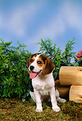PUP 09 FA0010 01
