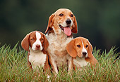 PUP 09 GR0009 02