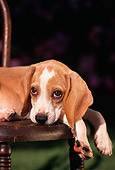 PUP 09 RK0022 04