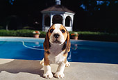 PUP 09 RK0092 07