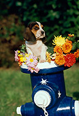 PUP 09 RK0159 02