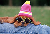 PUP 10 GL0001 01