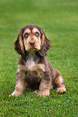 PUP 10 JS0002 01