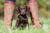 PUP 10 NR0057 01