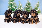 PUP 10 PE0025 01