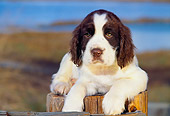 PUP 10 RK0059 01
