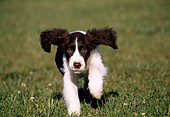 PUP 10 GR0001 03
