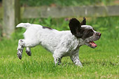 PUP 10 NR0018 01