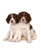 PUP 10 RK0100 01