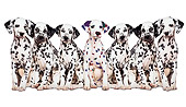 PUP 11 RK0002 05